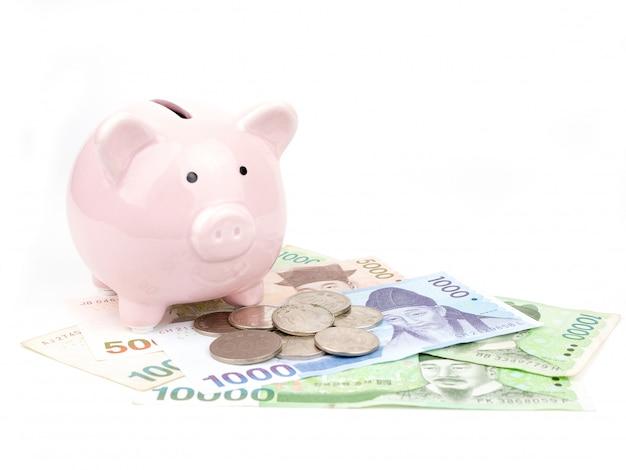 Spaarvarken met bankbiljetten en muntstukken die op witte achtergrond worden geïsoleerd. concept opslaan.