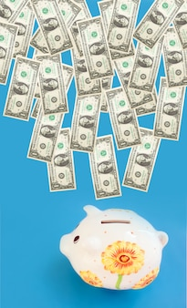 Spaarvarken met rekeningen