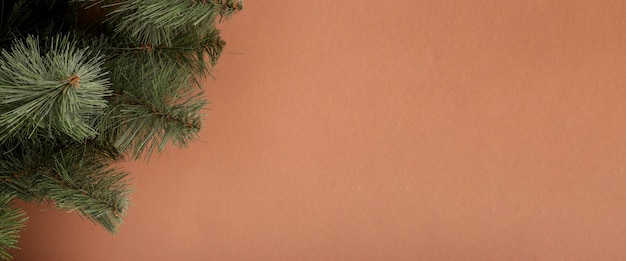 Spar takken op een bruine achtergrond. concept voor oud en nieuw en kerstavond. banier.