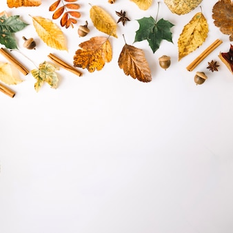 Specerijen en bladeren in arrangement