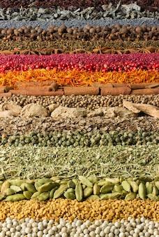 Specerijen en kruiden voor websiteontwerp.