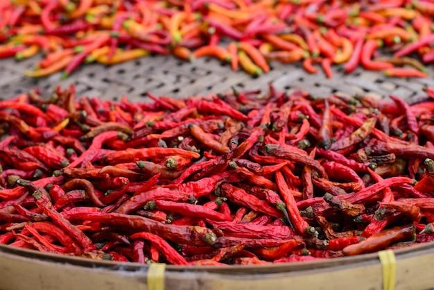 Specerijen - gedroogde rode peper van chilipeper
