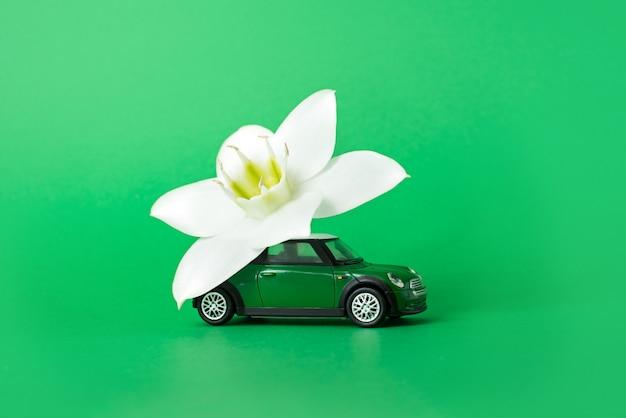 Speelgoedauto levert een witte bloem op een groene achtergrond. bloemen levering concept. internationale vrouwendag 8 maart, valentijnsdag