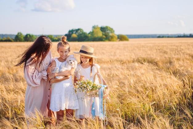 Spelen in een tarweveld en gelukkige familie