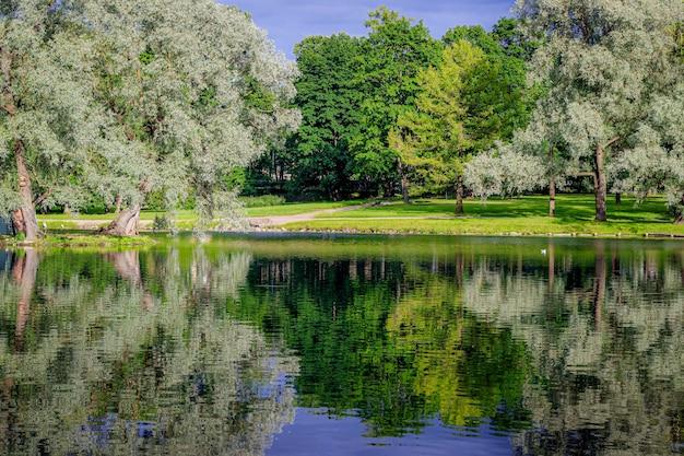 Spiegelbeeld van bomen op het meer