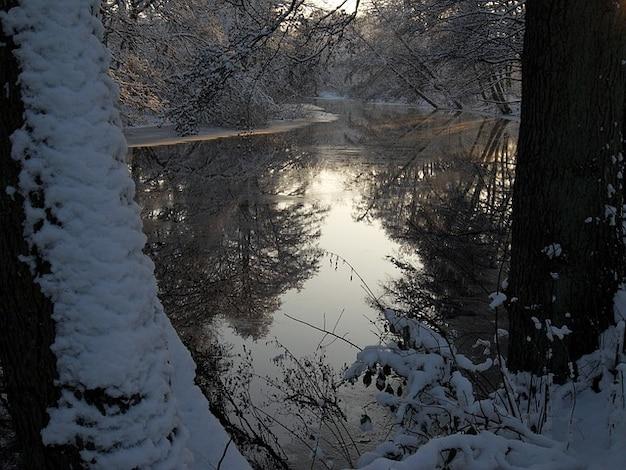 Spiegelen magische ijswater vorst winter