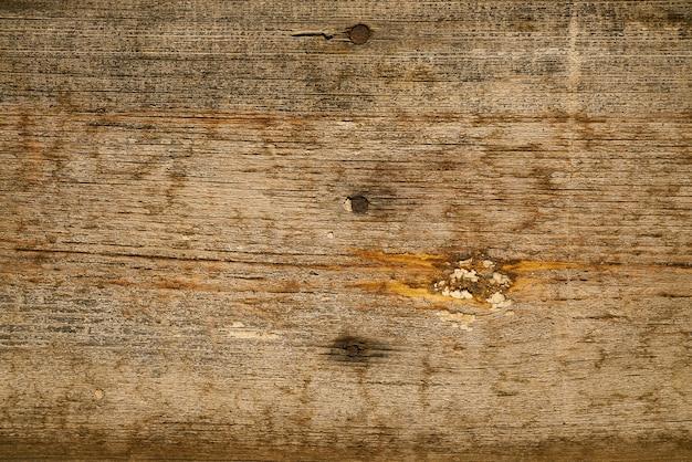 Spijkers op hout