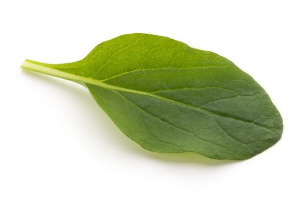 Spinazie bladeren close-up geïsoleerd op wit.