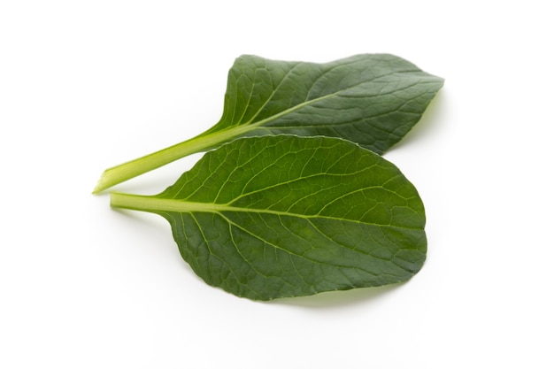 Spinazie bladeren close-up geïsoleerd op wit