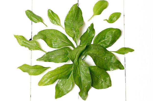 Spinazie bladeren op een witte houten achtergrond weergave van bovenaf