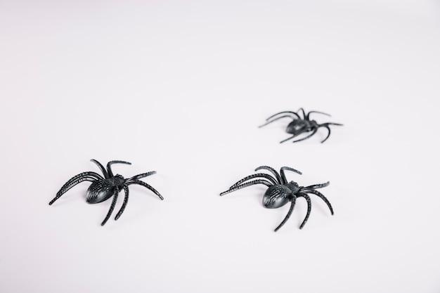 Spinnen kruipen op een witte achtergrond