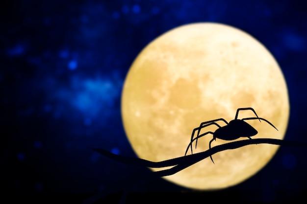 Spinsilhouet boven een volle maan