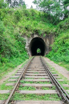 Spoorlijn die leidt naar de tunnel. een tunnel op een spoorweg die door een regenwoud loopt. spoorweg onder de groene natuur, sri lanka. reizen met de trein
