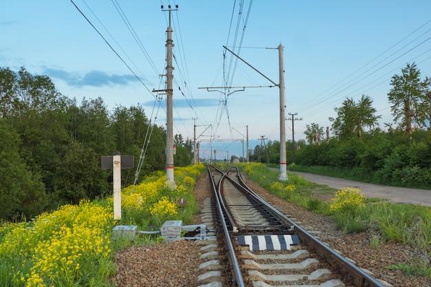 Spoorlijnen door het platteland in de avond