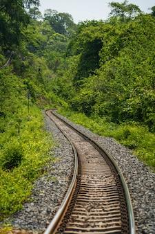 Spoorweg door jungle