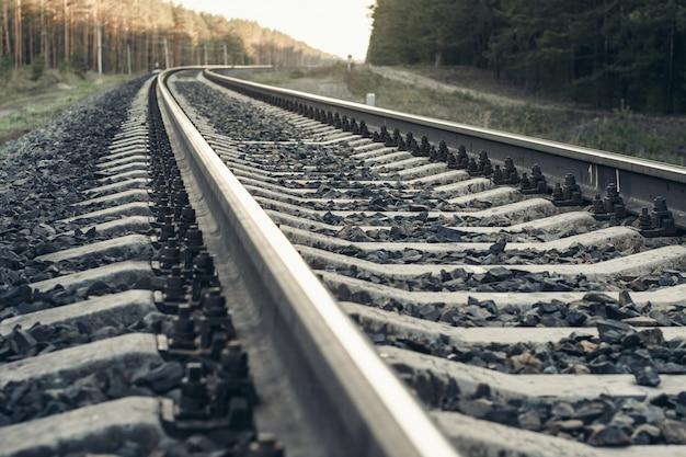 Spoorweg in bos.