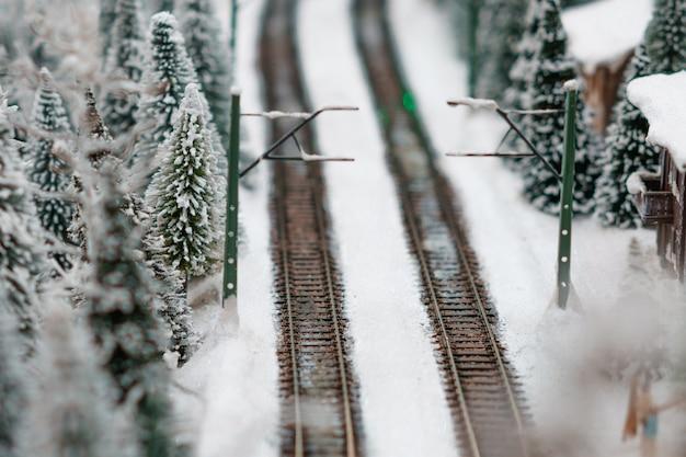 Spoorweg in het bos in de winter