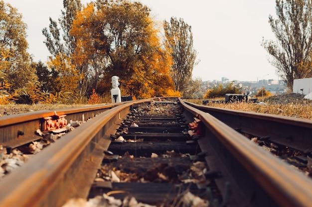 Spoorweg in het park. herfst park van bomen en gevallen bladeren op de grond in het park op een zonnige dag in oktober.