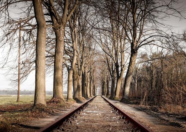 Spoorweg in land landschap