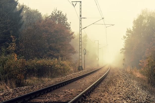 Spoorweg op het bos
