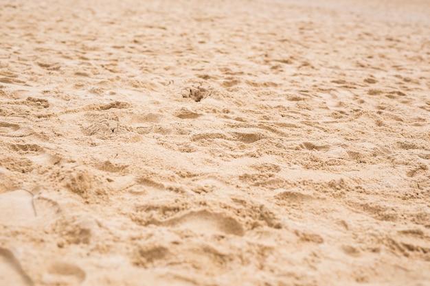 Sporen op een zand