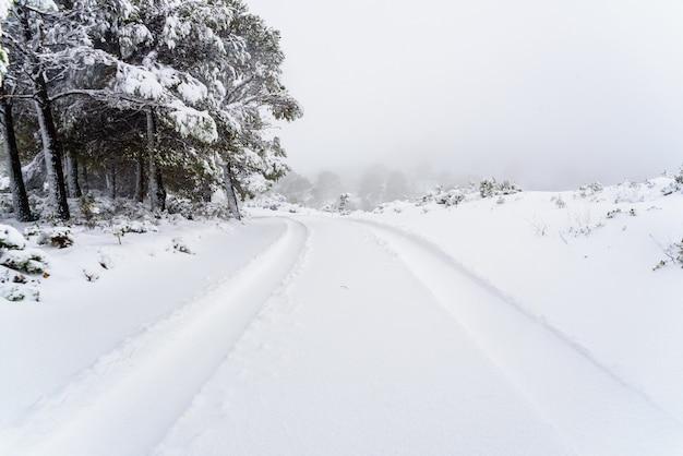 Sporen van de bandensporen van een auto op sneeuw op een heuvelachtige weg.
