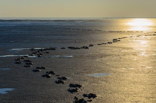 Sporen van menselijke voeten in het zoute meer van modder. het oppervlak van het zoutmeer.