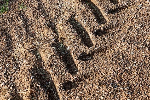 Sporen van tractor- of vrachtwagenwielen op het zand na regen