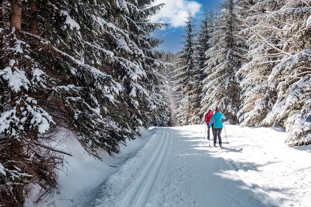 Sport langlaufen in de sneeuw voetafdrukken in het bos