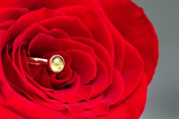 Sprankelende verlovingsring in rode roos.