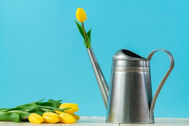 Spring achtergrond met metalen gieter en gele tulpen