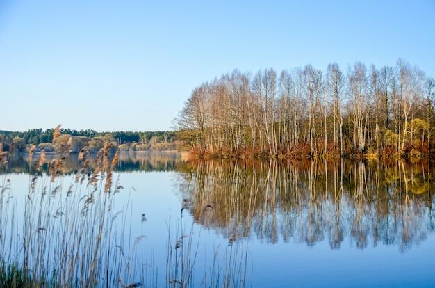 Spring door het kijkglas op de svisloch-rivier in minsk.