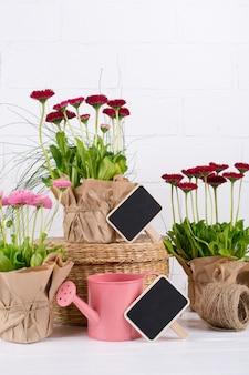 Spring garden works concept. tuingereedschap, bloemen in potten en gieter op witte tafel.