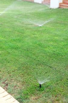 Sprinkler in tuin die het gazon water geeft