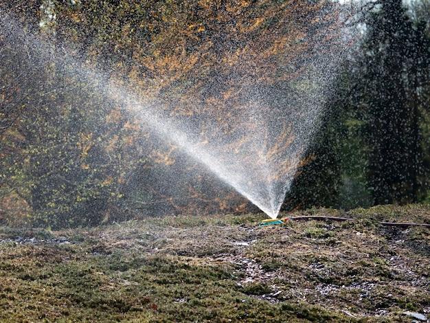 Sproeier bespuitend water op heuvelig gazon.