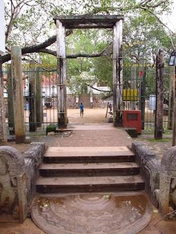 Sri maha boodhi-tempel, anuradhapura, sri lanka