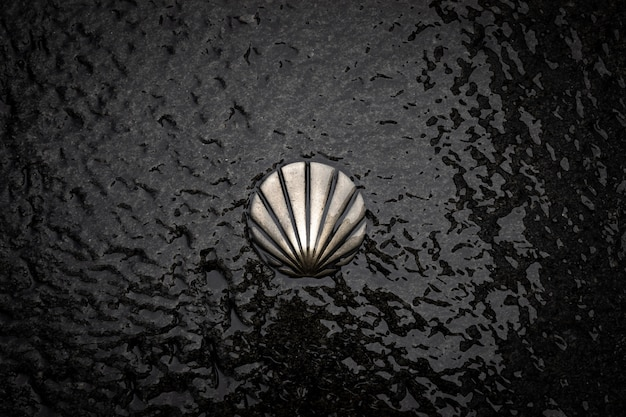 St james way shell-symbool. camino de santiago bronzen bord