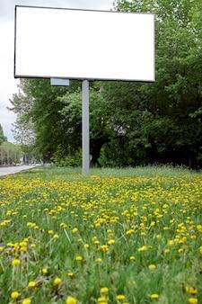 Stadsaanplakbord in groen gras en gele paardebloemen