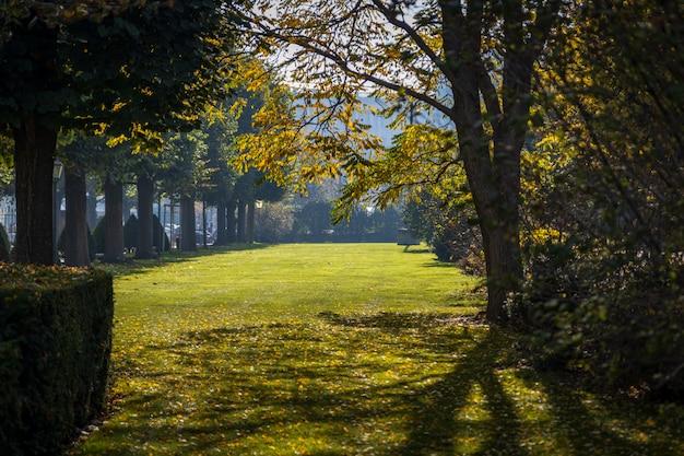 Stadspark van wenen in de vroege herfst met zon schijnt door de bomen