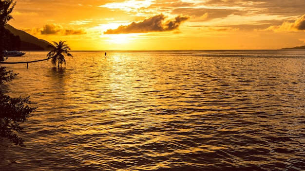 Stand up paddler sup op sunset, kri island. raja ampat, indonesië, west-papoea.