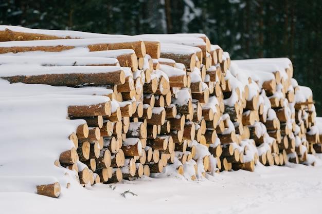 Stapel brandhout in de sneeuw