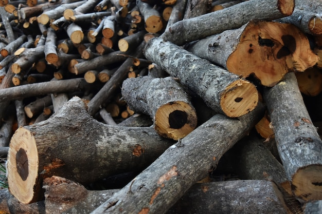 Stapel brandhout