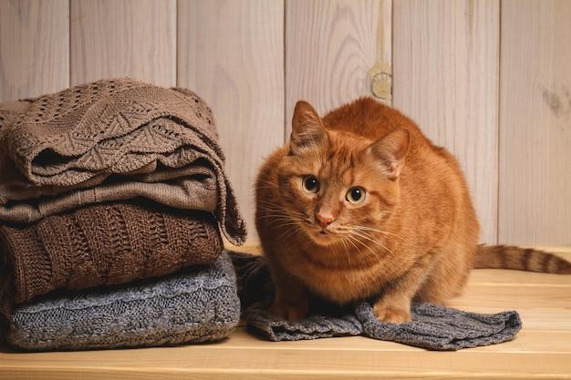 Stapel gebreide truien en rode kat op een houten