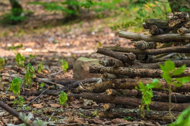 Stapel gestapeld brandhout in het bos