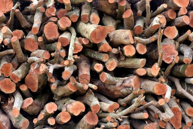 Stapel gezaagde houtlogboeken om als brandhout te dienen