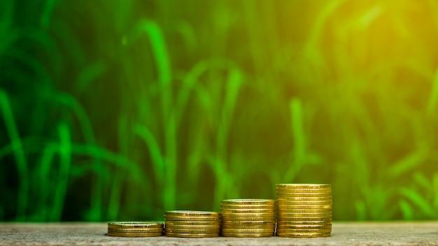 Stapel gouden munten in de tuin.