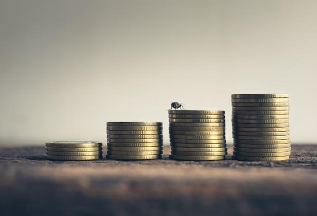 Stapel gouden muntstukken met vlieg op cementvloer in uitstekende toon.