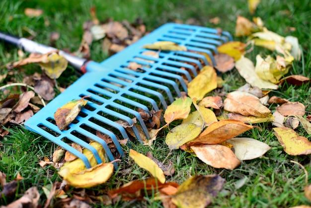 Stapel herfstbladeren met ventilatorhark op groen grasgazon