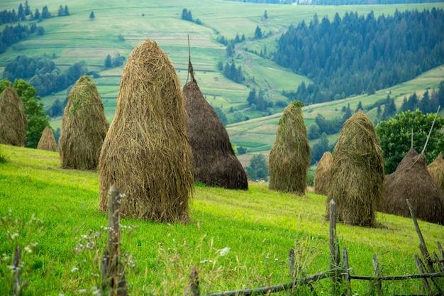 Stapel hooi op een bergweide op een heuvel. mooi landschap van bergachtig landschap op een zonnige dag. karpaten oekraïne