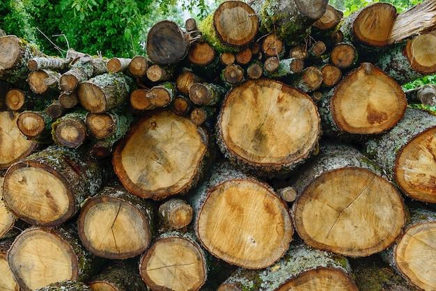 Stapel hout voor verwarming